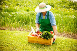 gardening senior woman vegetables white