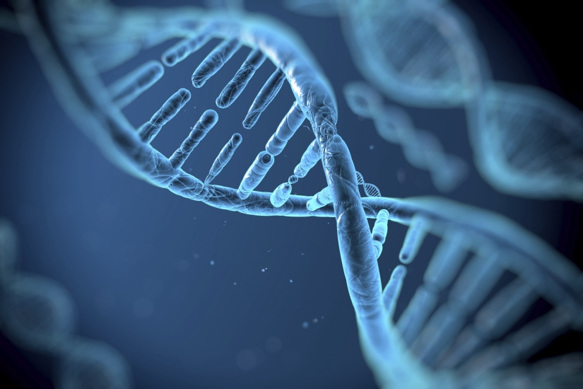 Cancer Risk Linked to DNA 'Wormholes'